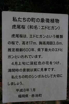 IMG_5644.jpg